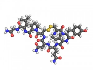 Oxytocin is a molecule that looks like this